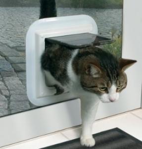 Tilbehør til katte