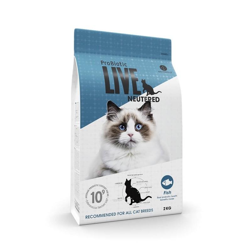 LIVECATAdultNeuteredFisk-31