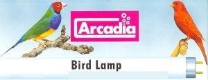 ArcadiaBirdLamp26mm-31