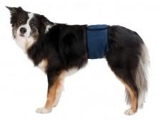 Bindtilhanhundstr-31