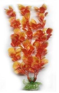 EVOPlastplanteRotalasparaguaia30cm-31