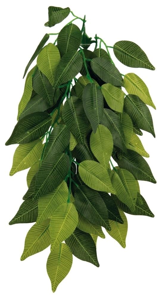 TRPlastikplanteFicus-31