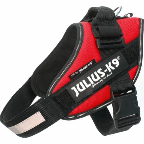 JuliusK9SeleStr0-33