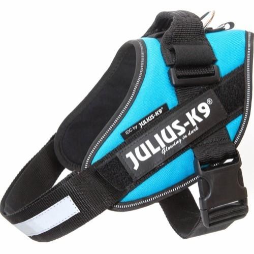 JuliusK9SeleStr0-03