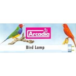 ArcadiaBirdLamp26mm-20