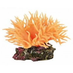 TR Søanemone orange 8cm (8888)-20