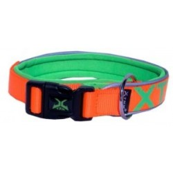 Neon flash collar-20