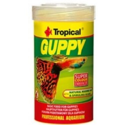 TROPICAL Guppy-20