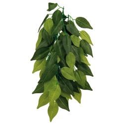 TRPlastikplanteFicus-20