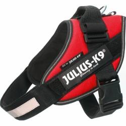 JuliusK9SeleStr0-20