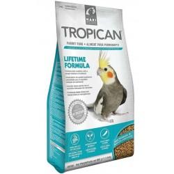 TropicanLifetimeFormula2mm-20