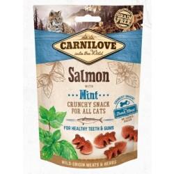 CarniloveCrunchySalmonwmint50gram-20