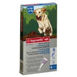 Bayvantic Vet Hund 4 x 4 ml, 25 - 40 kg