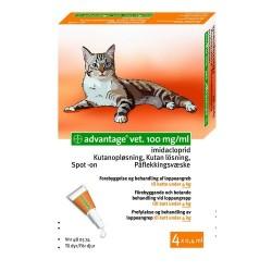 Advantage Kat 0-4 kg, 4x0,4ml