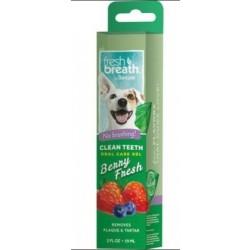 Clean Teeth Oral Care Gel, Berry Fresh