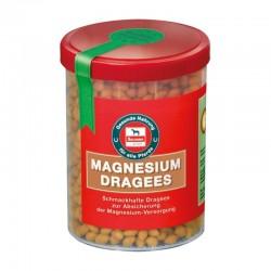 Salvana Magnesium Dragee 750 gr.